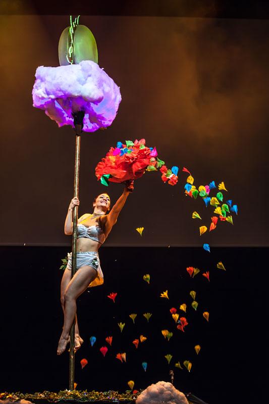 Show pole danse