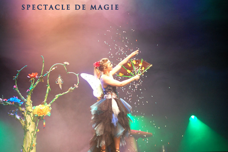 Spectacle de magie 93
