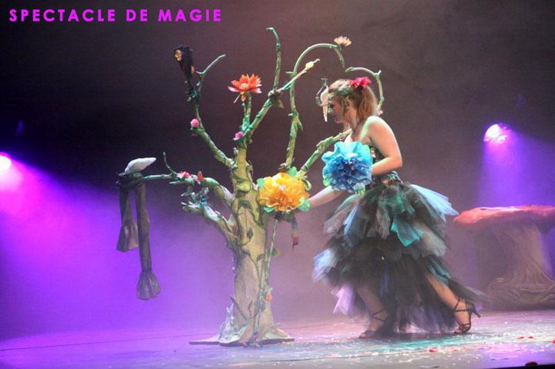 Spectacle de magie Paris