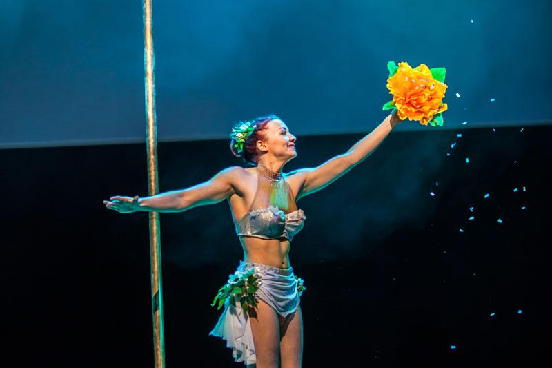 Spectacle Elfia pole dance