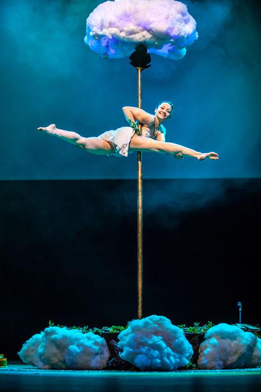 Spectacle pole dance magicienne Elfia