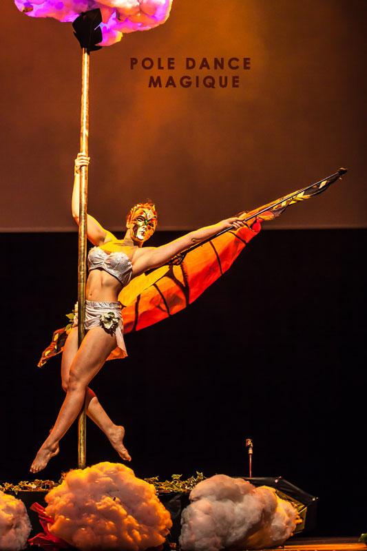 Spectacle pole dance Paris