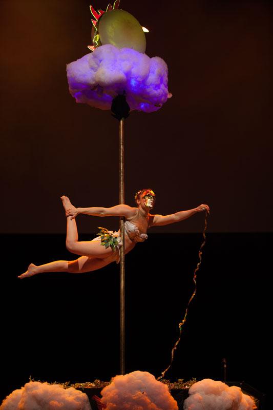 Spectacle pole dance magicien
