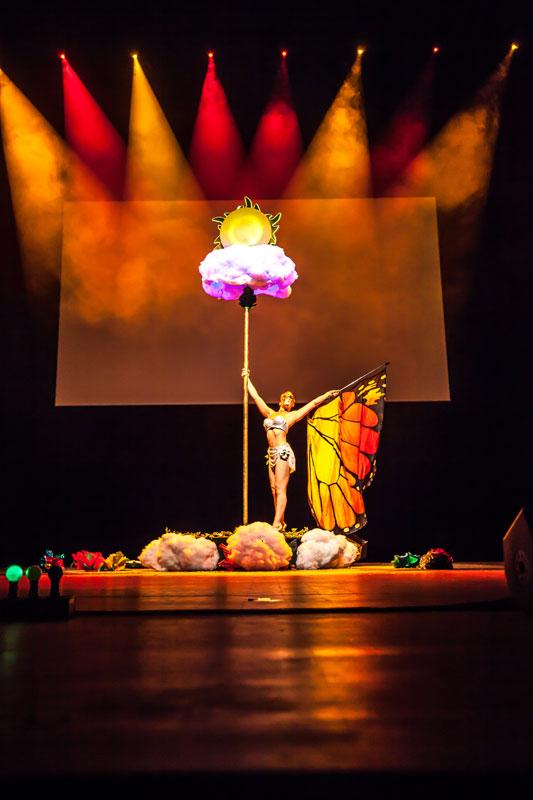 Spectacle pole danse magicienne