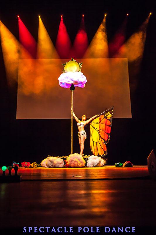 Show de pole dance 91