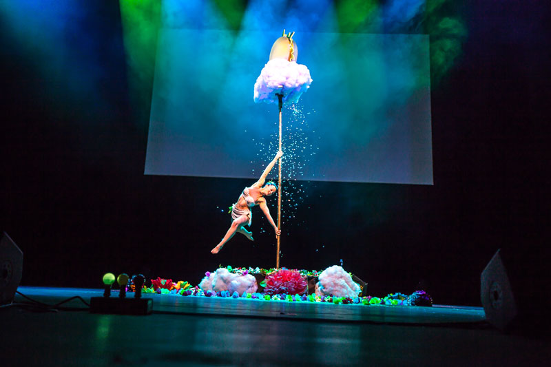 Show pole dance magie 95