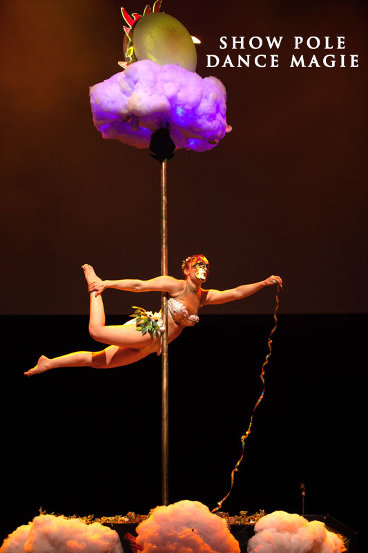 Show pole dance Reims 51