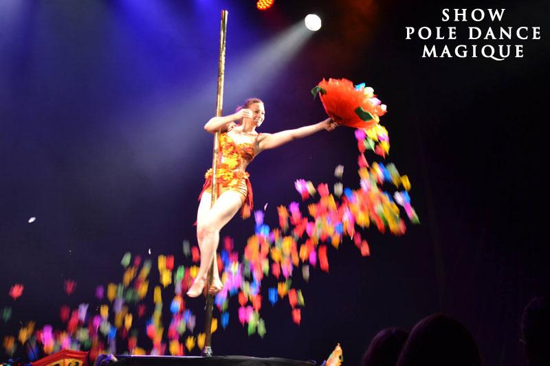 Spectacle pole dance 60 Oise