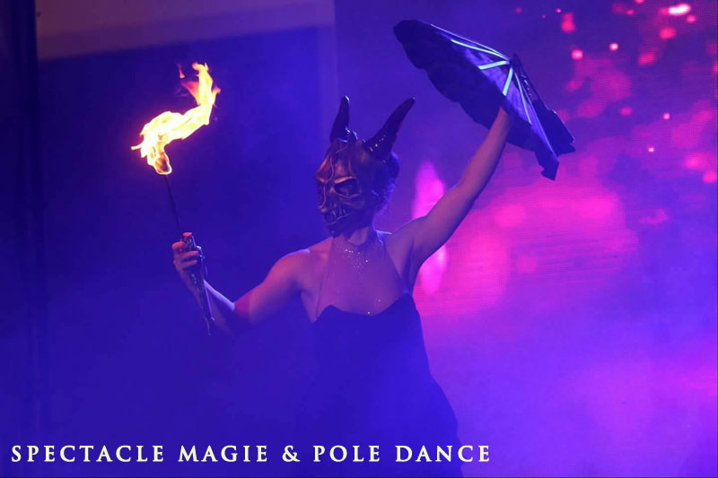 Spectacle de pole dance 91