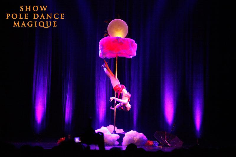 Spectacle pole dance Lyon