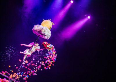 show-pole-dance